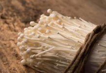 budidaya jamur enoki
