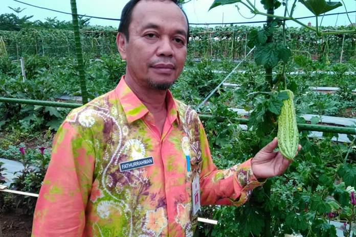 Wisata Edukasi Kampung Hortikultura Di Banjarbaru Pertanianku
