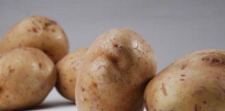 menyimpan kentang di dalam kulkas