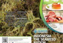Produsen rumput laut hydrocolloids tropis