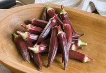 manfaat okra merah