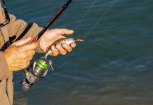 destinasi wisata mancing terbaik sedunia