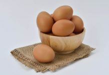 mitos dan fakta telur