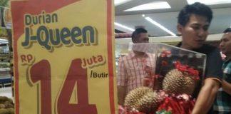 durian Rp14 juta