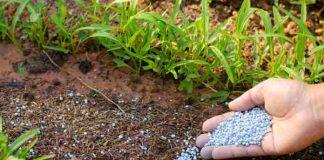 pertanian alami berbiaya nol