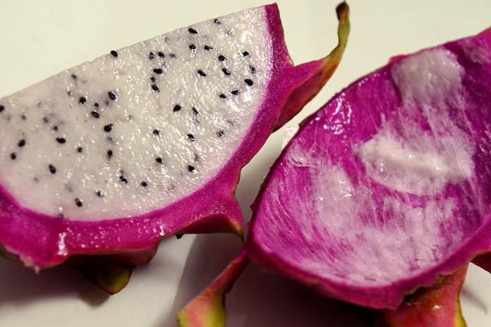 kulit buah naga