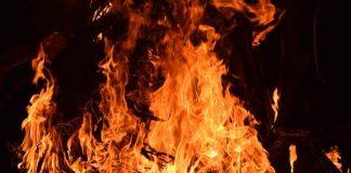 peternakan terbakar