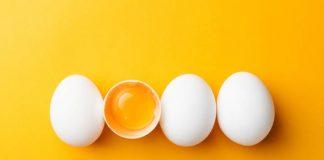 fakta unik telur