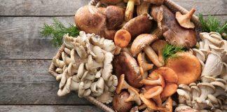 membuat daging dari jamur