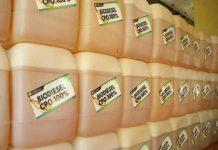 biodiesel dari CPO