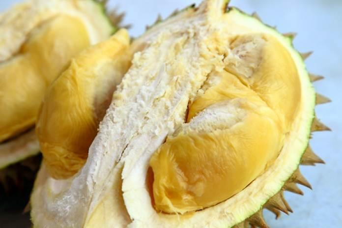 Manfaat biji durian