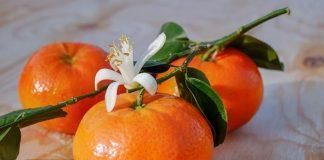 jenis buah bergizi