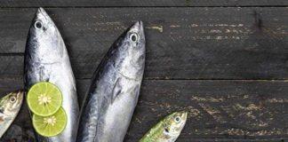 Ikan cakalang atau katsuo