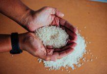 stok beras aman