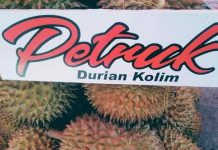 durian unggul nasional