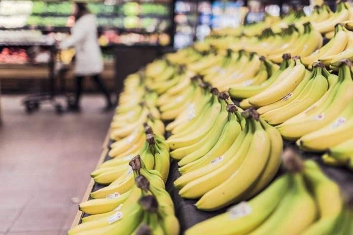 jenis pisang unggulan