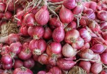 harga bawang merah naik