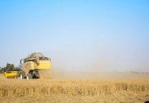 pertanian Israel maju pesat