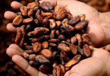 bantuan pertanian