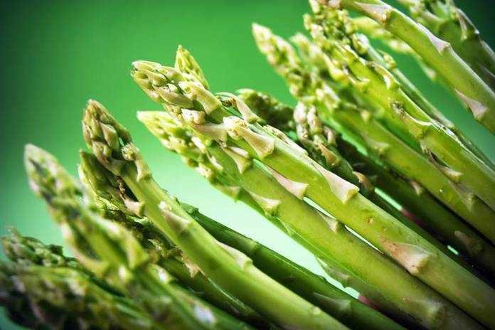 menamam asparagus di pekarangan