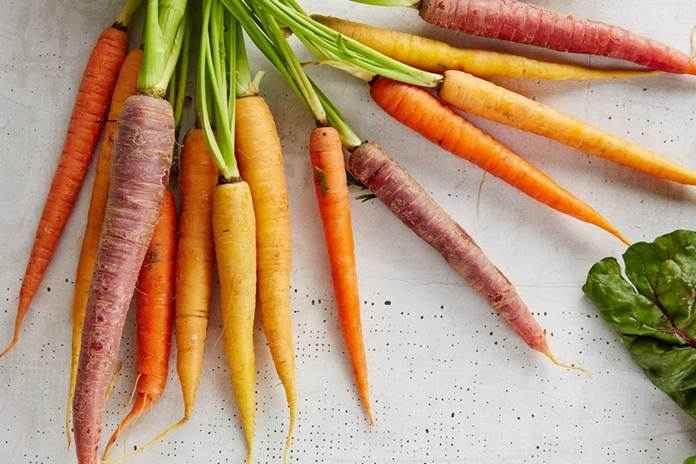 jenis wortel