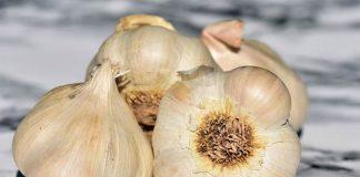 bawang putih impor