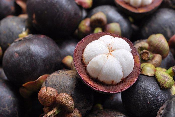 Potensi durian dan manggis