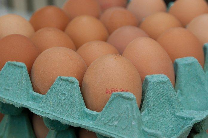 harga telur dan daging ayam