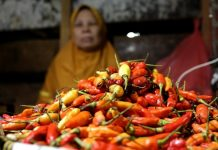 harga beberapa komoditas pangan