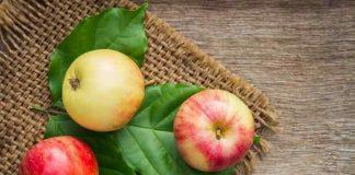 jenis apel