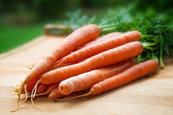 Syarat pertanian organik