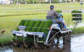 kemajuan pertanian Jepang