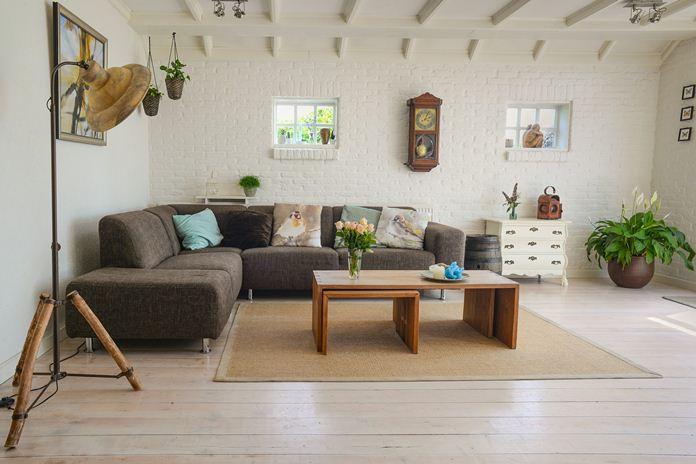 dekorasi ruangan dengan tanaman hias