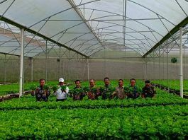 ekspor produk pertanian ke Cina