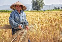 meningkatkan kesejahteraan petani