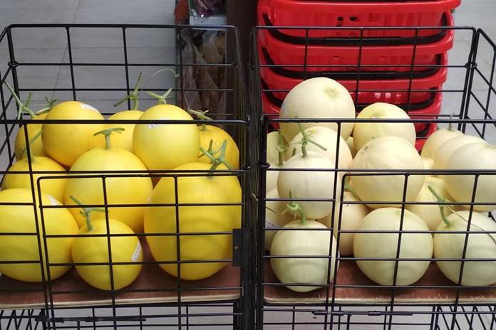 melon berukuran mini