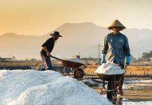 penyerapan garam oleh industri cenderung menurun