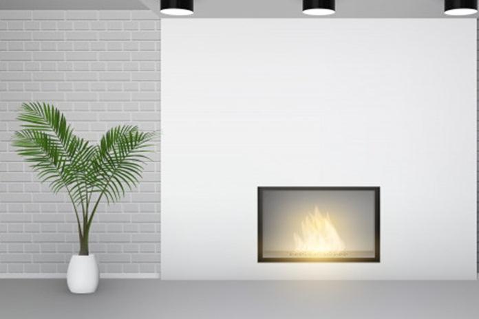 tips tanaman hias yang untuk rumah minimalis