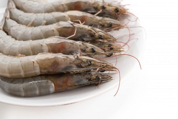 makanan laut yang bisa disimpan di dalam kulkas