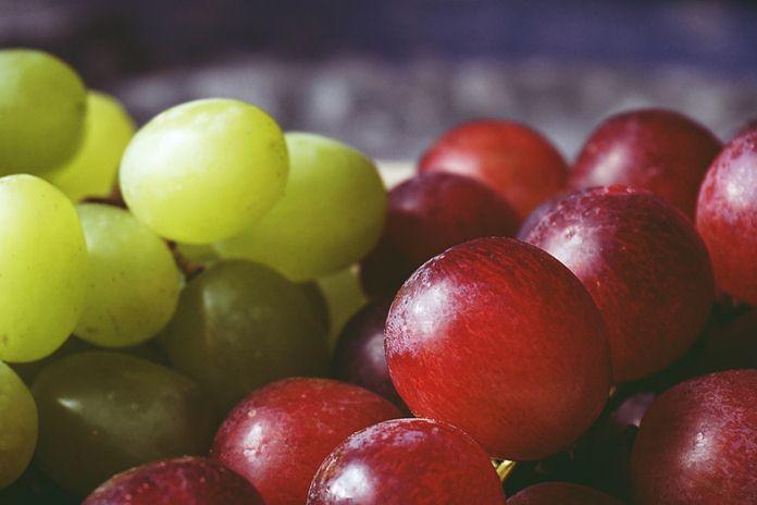 penghasil anggur terbaik di dunia