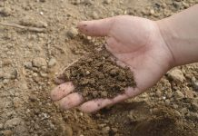 kunci kemajuan pertanian