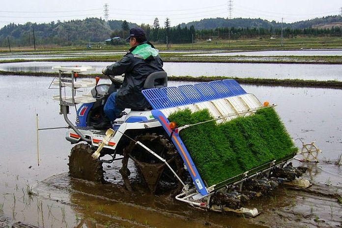 Manfaat Penggunaan Mesin Padi Modern untuk Pertanian - Pentingnya Pertanian Modern untuk Keberhasilan Pembangunan Desa Terpencil