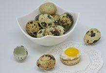 mitos telur puyuh