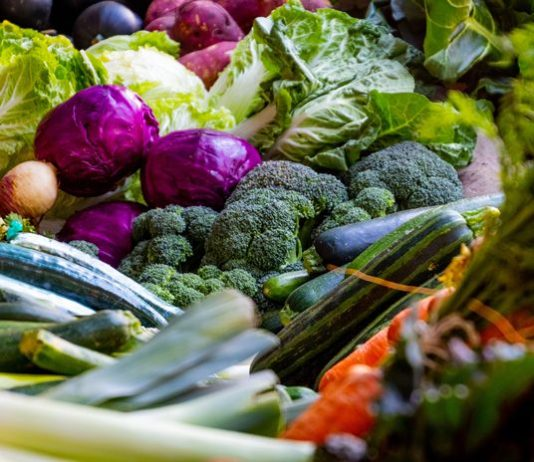 izin ekspor tanaman pangan