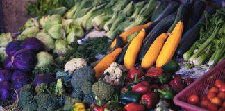 tips pemasaran ekspor untuk produk pertanian