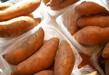 cara memilih ubi