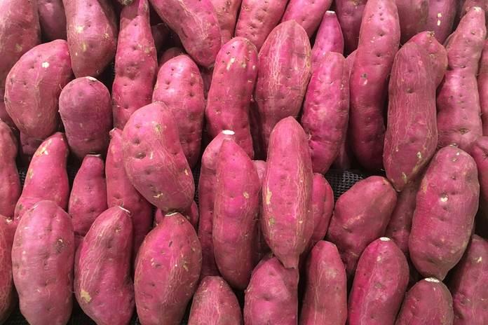 ubi ungu adalah taro