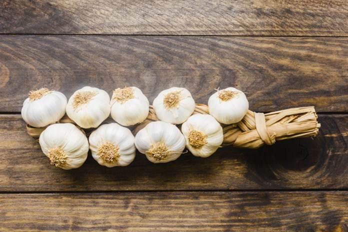 Jenis bawang putih lokal