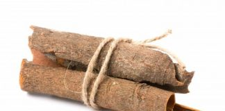 varietas kayu manis
