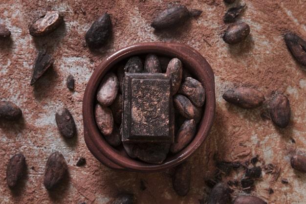 Pembibitan cokelat